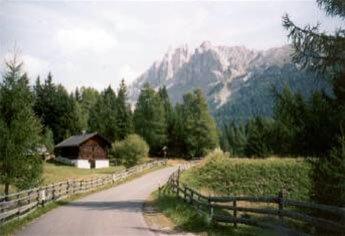 Alpi di Siusi