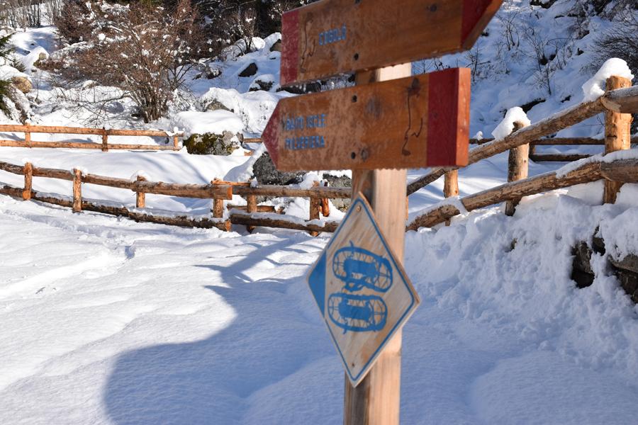 Giro dei Masi, Cogolo, Val di Sole