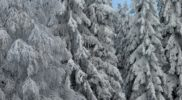 Wat is het mooiste wintersportgebied?