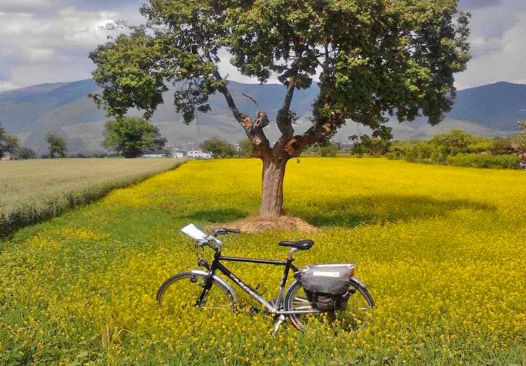 Wandel- en fietsvakanties met Ecologicotours in Umbria