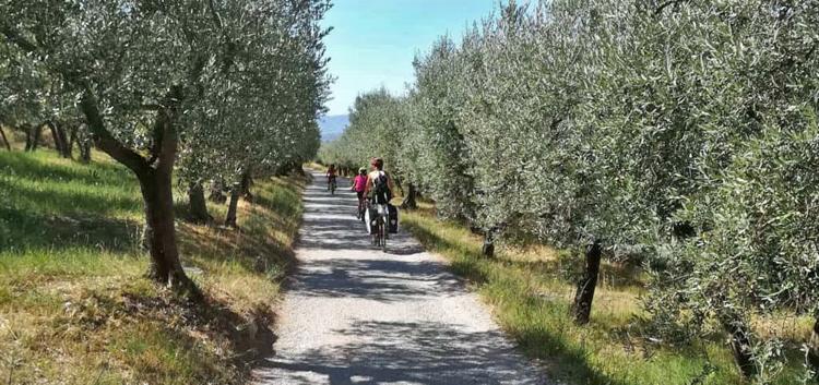Wandel- en fietsvakanties met Ecologicotours