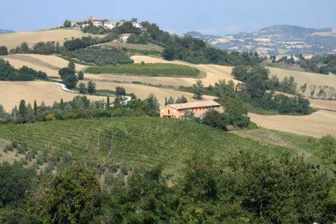 Agriturismo Le Marche
