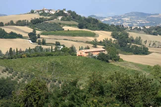 Agriturismo Montesoffio in Le Marche, De Marken