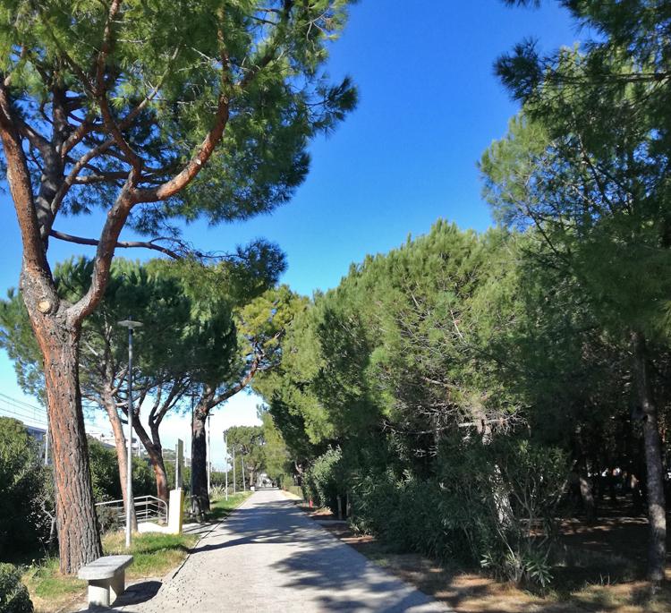 Pineto, regione Abruzzo