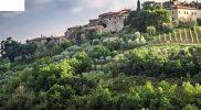 Toscane, Umbrie, De Marken - Dominicus - uitverkoop