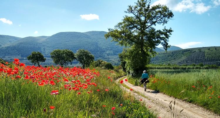 Wandelen in Umbrie © Meravigliosa Umbria