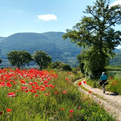 Wandel- en fietsvakanties in Umbria