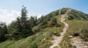 Wandelen op Monte Panarotta, Valsugana