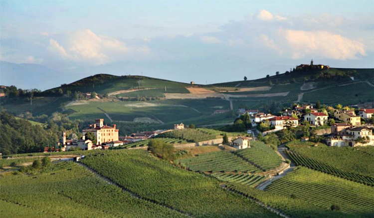 Villa Fattoria Italiaanse kwaliteitswijnen
